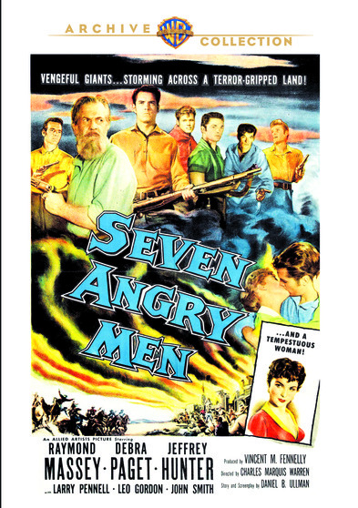 a plot review of the story of angry men