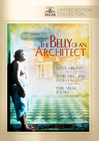 Belly Of An Architect, The
