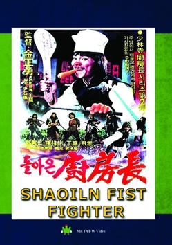 Shaoiln Fist Fighter