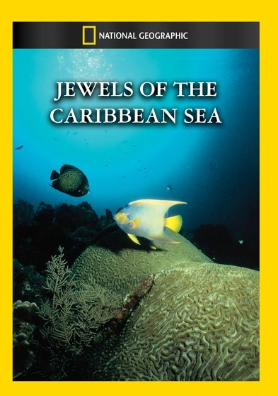 Jewels Of The Caribbean Sea 727994950257