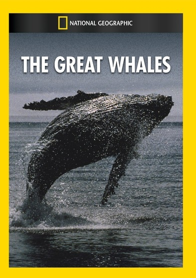 The Great Whales 727994951537