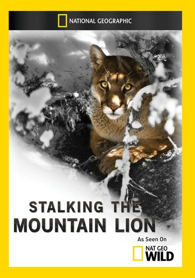 Stalking the Mountain Lion 727994955023