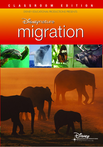 Disneynature Migration  786936798876