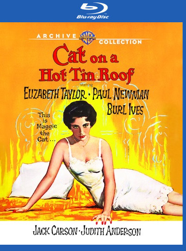 Cat On A Hot Tin Roof [Blu-ray] 888574379438