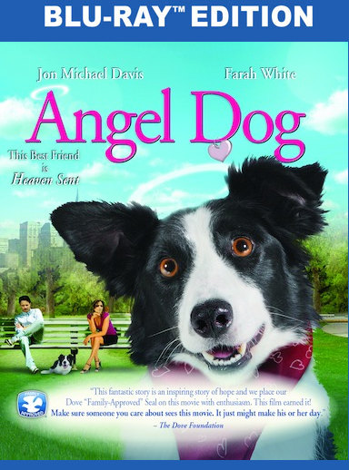 Angel Dog  [Blu-ray] 889290930729