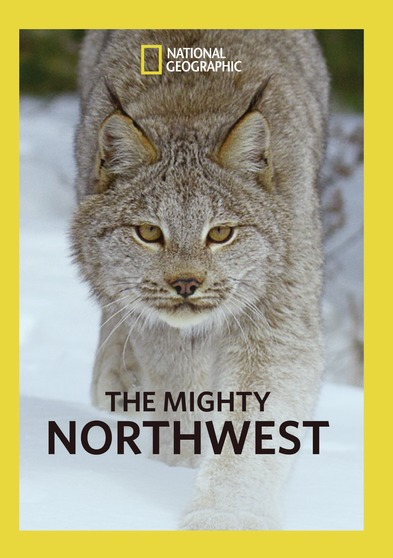 The Mighty Northwest