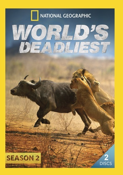 World's Deadliest Season 2