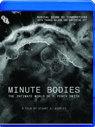 Minute Bodies [Blu-ray]